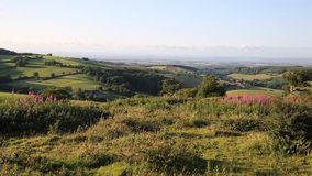 Quantock Hills Somerset England UK countryside views towards Hinkley Point Nuclear Power station stock video