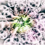 Quantum Reality - Multiple Universes - Relativity Theory. Abstract Illustration Stock Image
