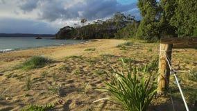 Quarantainebaai in Eden in Australië bij zonsopgang, ochtendlicht stock video