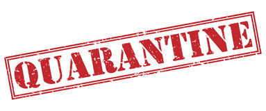Quarantine red stamp. On white background Royalty Free Stock Photos