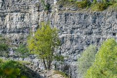 Quarry between Darmsheim and Dagersheim in Sindelfingen Germany,. A Natural Reserve Stock Photography