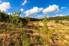 Quarry or lake or pond with sandy beach, brown dirty water, tree Stock Photography