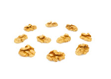 Quarter core of walnuts Stock Photography