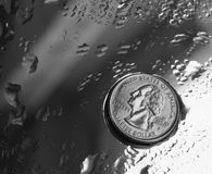 Quarter dollar. Coin on the grass with drops of water Stock Photography