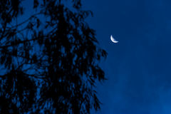 Quarter moon Royalty Free Stock Photography