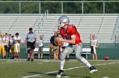 Quarterback Ready to Pass stock images