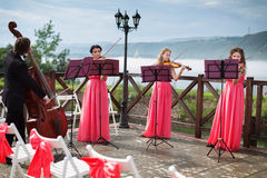 Quartet of classical musicians playing at a weddin. G outdoors near the river Stock Images