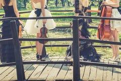 Quartet musical femelle en nature Photos stock