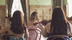 Quartet playing classic music. Rear view of quartet playing classic music stock video
