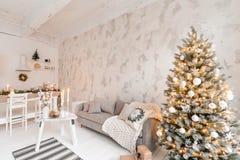 Quarto com árvore de Natal confortável fotos de stock