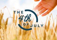Quarto del blu del grafico di luglio contro il grano ed il chiarore commoventi della mano Immagine Stock