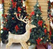 Quarto do Natal fotos de stock