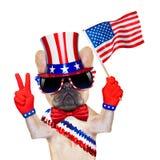 quarto oh cane di luglio Immagini Stock Libere da Diritti