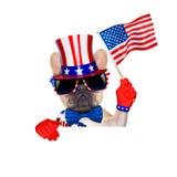 quarto oh cane di luglio Fotografia Stock
