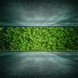 Quarto verde fotografia de stock