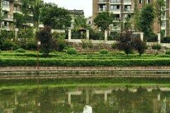 Quarts résidentiels d'écotype vert Image stock