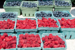 Quarts of Raspberries & Blueberries for Sale. Maine blueberries and raspberries by the quart are for sale at a farmer's market Stock Image