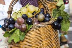 QUARTU S.E., ITALY - September 15, 2013: Wine Festival, in honor of the celebration of St. Helena - Sardinia Royalty Free Stock Photography