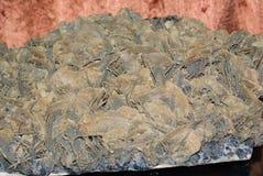 Quartz pyrite flower mine Stock Photography