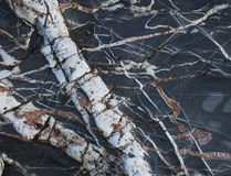 Quartz veins Stock Photo