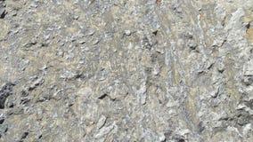 Quartzite & ασβεστόλιθων σύσταση λίθων στοκ φωτογραφία με δικαίωμα ελεύθερης χρήσης