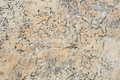 Quartzite Textured Background Stock Images