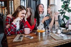 Quatre amis bavardant dans un café Image stock