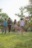 Quatre amis entrant dans un parc pour avoir un pique-nique une journée de printemps, portant un panier de pique-nique et un ballon Photographie stock