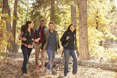 Quatre amis heureux apprécient une hausse dans une forêt, la Californie, Etats-Unis Photographie stock libre de droits