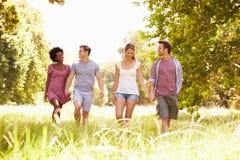 Quatre amis marchant ensemble dans la campagne Photo libre de droits