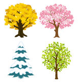 Quatre arbres de saisons Photo libre de droits