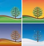quatre arbres de saisons Photo stock
