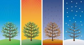 quatre arbres de saisons Photos libres de droits