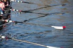 Quatre avirons se reposant sur le suface du lac bleu Photographie stock