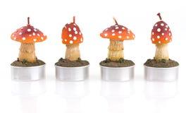 Quatre bougies dans la forme de champignon de couche Photographie stock libre de droits