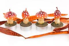 Quatre bougies dans la forme de champignon de couche sur le fond blanc Photos libres de droits