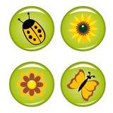 Quatre boutons d'été pour votre conception Photographie stock libre de droits