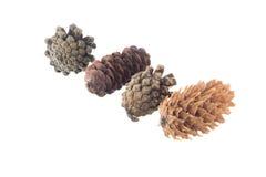 Quatre cônes Photo stock
