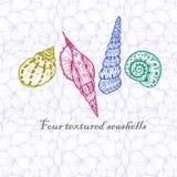 Quatre coquillages de griffonnage Photos libres de droits