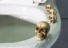 Quatre crânes sur la piscine de jante (toilette) Photographie stock libre de droits