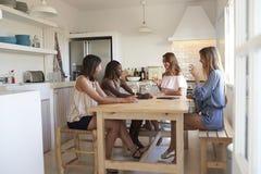 Quatre femmes à la table de cuisine avec du vin pendant la nuit de ½ de ¿ de girlsï dedans Photos stock