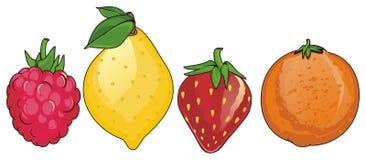 Quatre fruits colorés Photos libres de droits