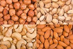 Quatre genres de noix en vrac Images libres de droits