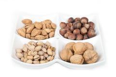Quatre genres de noix populaires Photographie stock
