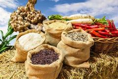 Quatre genres de riz dans de petits sacs de toile de jute Image libre de droits