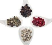Quatre genres différents de grains de poivre Image stock