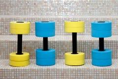Quatre haltères pour l'aérobic d'eau Photos libres de droits