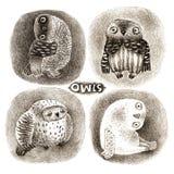 Quatre hiboux en pastel Photos libres de droits