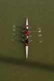 Quatre hommes ramant sur le Danube image libre de droits