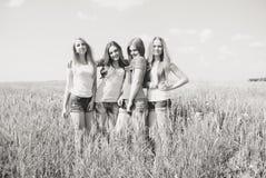 Quatre jeunes amis ayant l'amusement en été dehors Image stock